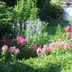 Der Vorgarten mit viel Potenzial für attraktive Außenanlagen