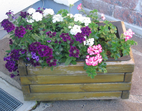 Mit einem nett hergerichteten Blumenkasten die Terrasse verschönern