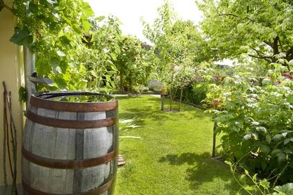 Gießwasser Für Den Garten